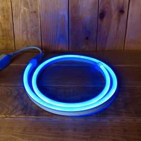 Néon LED flexible bleu 220V direct étanche