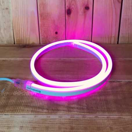 Néon LED flexible rose 220V direct étanche