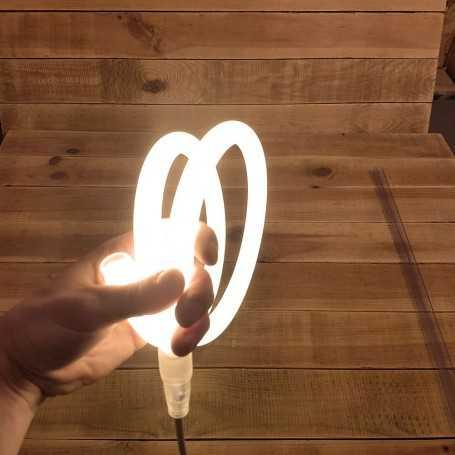 Néon LED flexible 360 rond blanc chaud 220V direct étanche