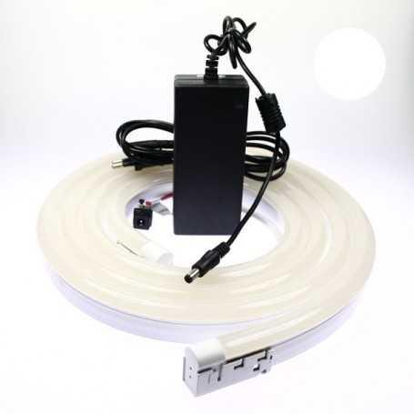 Kit néon led bulbe blanc 5m avec alimentation 220V