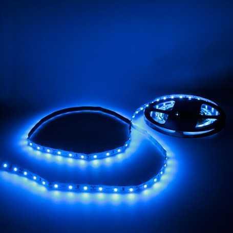 Bande LED bleue 60LED/m IP20 2m50