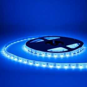 Bande LED side bleue 60LED/m étanche 5m
