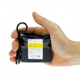 Mini batterie rechargeable 12V 1800mAh + chargeur